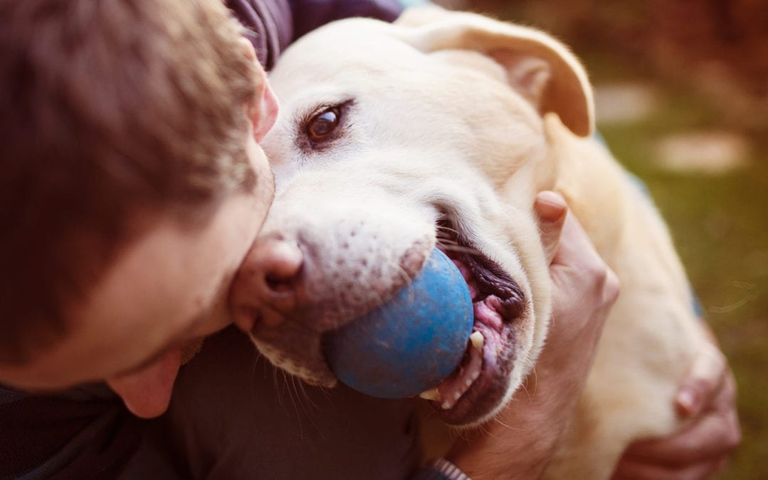 How to help a choking dog