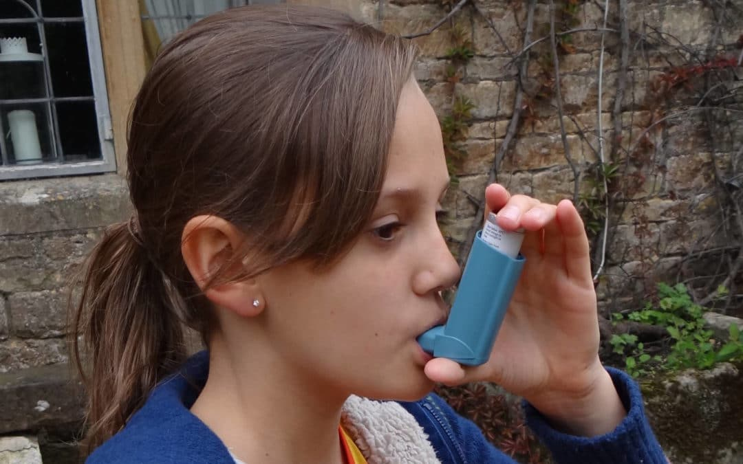 Asthma – why tree pollen, alcohol and cold make it worse