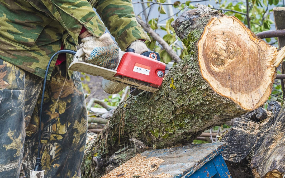 Why bank holidays are so dangerous and 14 tips for safer DIY!